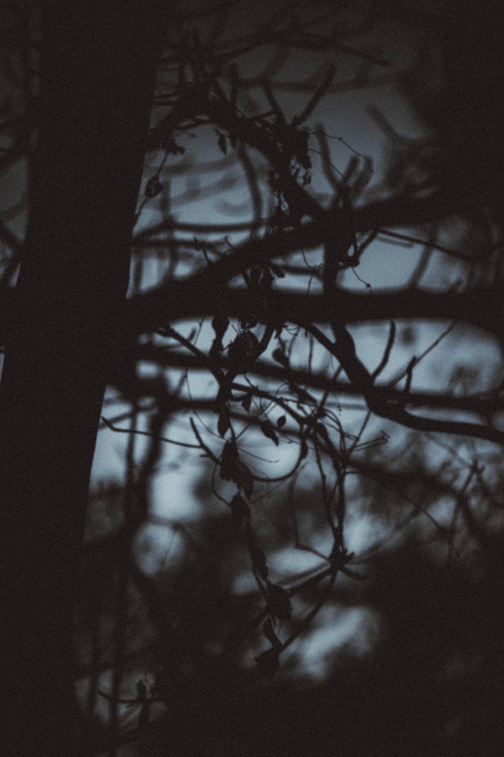 Silencio_escuchar poesía
