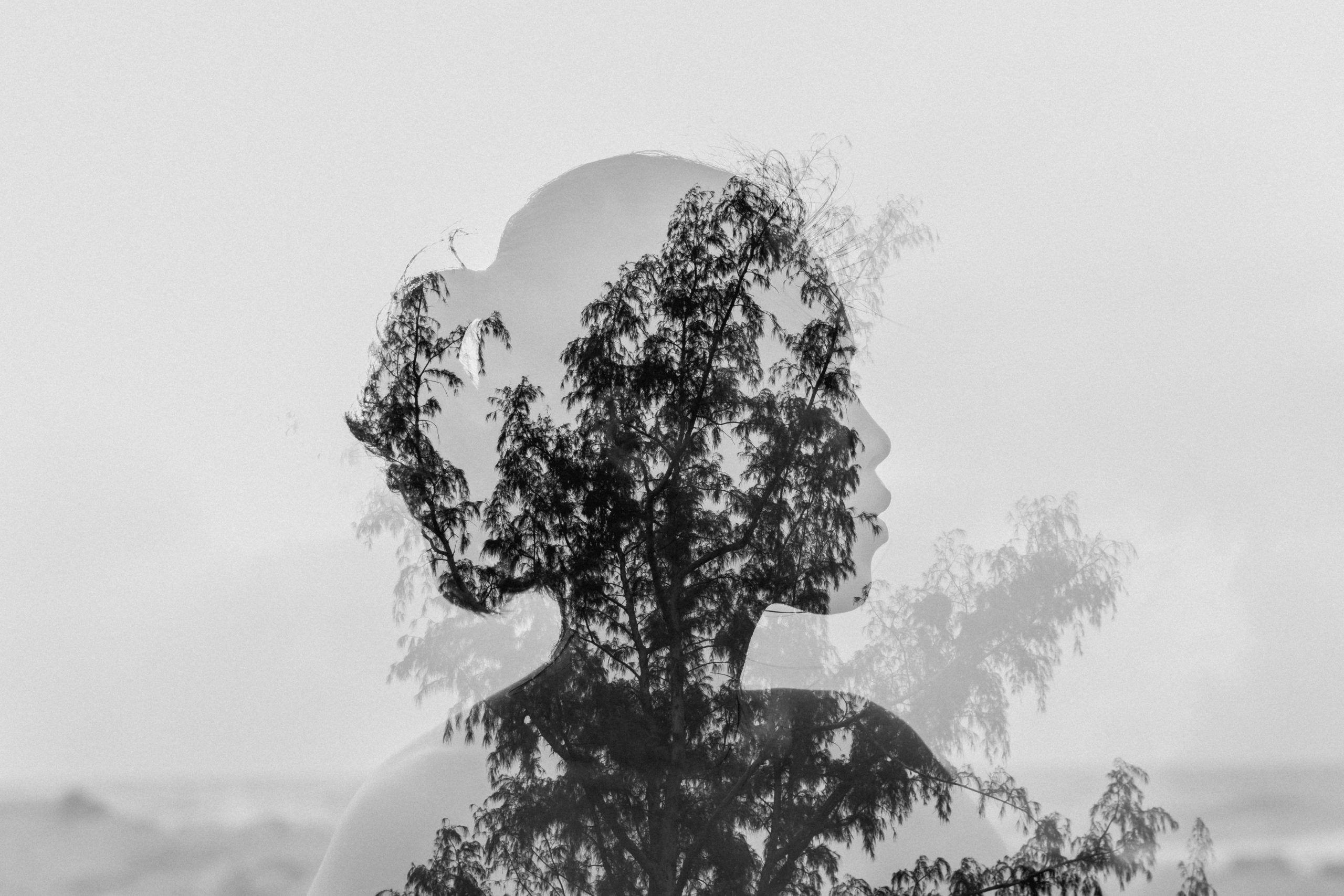 Desolación_escuchar poesía